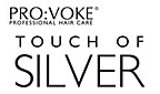 touchofsilver_kl_2